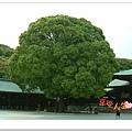 http://pics21.blog.yam.com/13/userfile/e/enjoylife22/album/148ce9a6d6395a.jpg