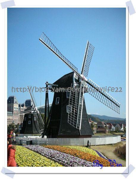 http://pics21.blog.yam.com/5/userfile/e/enjoylife22/album/145e14553f257c.jpg