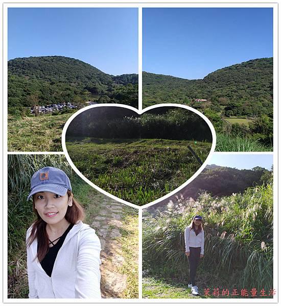 【大屯山主峰與二子坪步道】秋天在陽明山國家公園就是要賞芒草