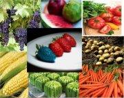 轉基因農產品
