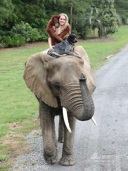 與非洲象朋友泡泡 兜風2.jpg