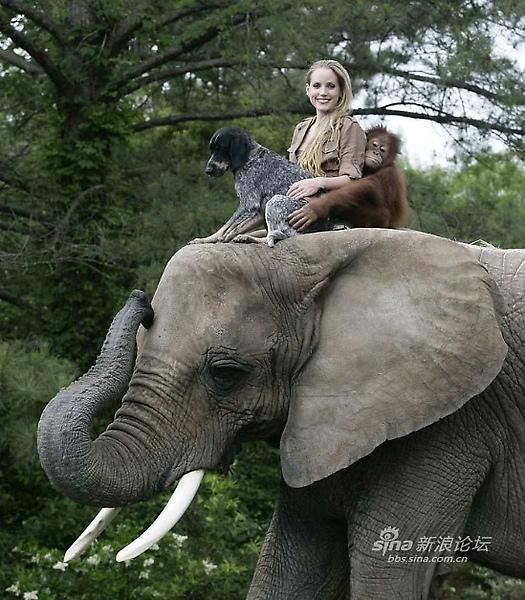 與非洲象朋友泡泡 兜風.jpg