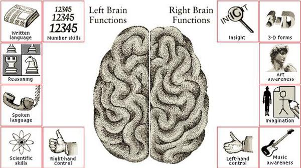 你腦內的兩個世界.jpg