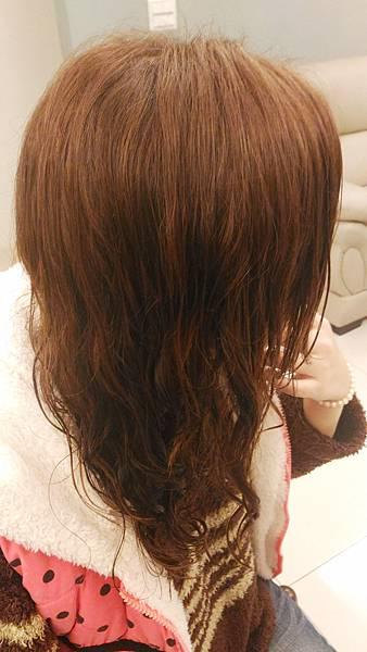 Elastin伊絲婷 洗潤染髮組 (50).jpg