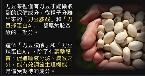 刀豆 (2)