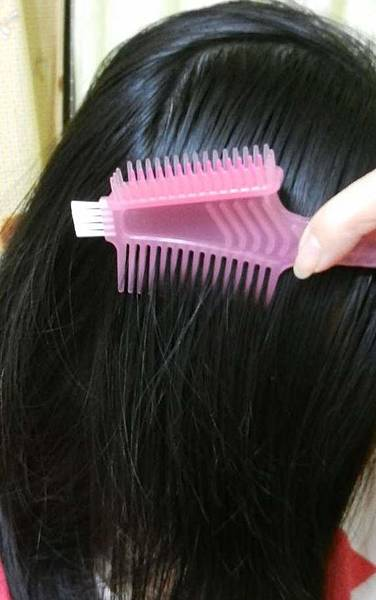 莉婕頂級一按即梳染髮霜 (28).JPG