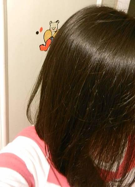 莉婕頂級一按即梳染髮霜 (39).JPG