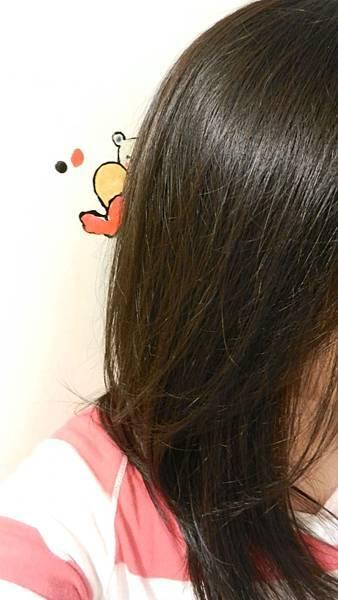 莉婕頂級一按即梳染髮霜 (42).JPG