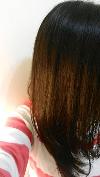 莉婕頂級一按即梳染髮霜 (43).JPG