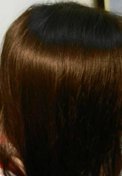 莉婕頂級一按即梳染髮霜 (44).JPG