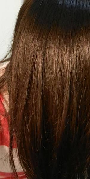 莉婕頂級一按即梳染髮霜 (45).JPG