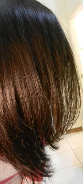 莉婕頂級一按即梳染髮霜 (46).JPG