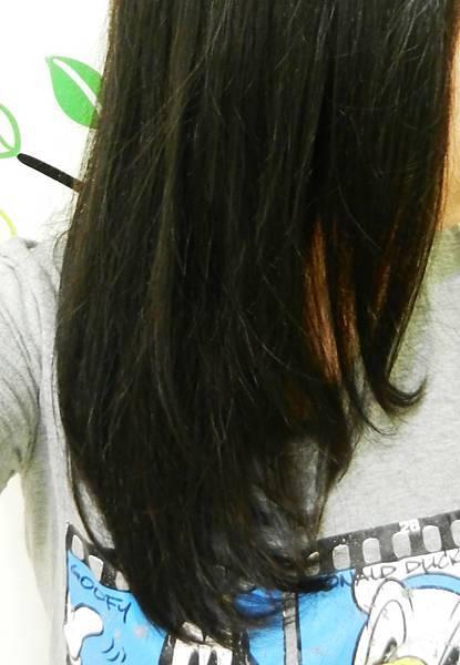 施華寇多效修護洗髮乳 (19).JPG