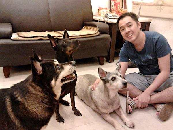 3-1「陳立書『一家三狗』,猜猜哪隻是車站狗王丹丹?(照片提供:陳立書)