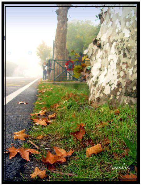 義大利的秋天的早晨