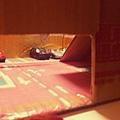 C360_2014-01-07-20-05-32-046.jpg