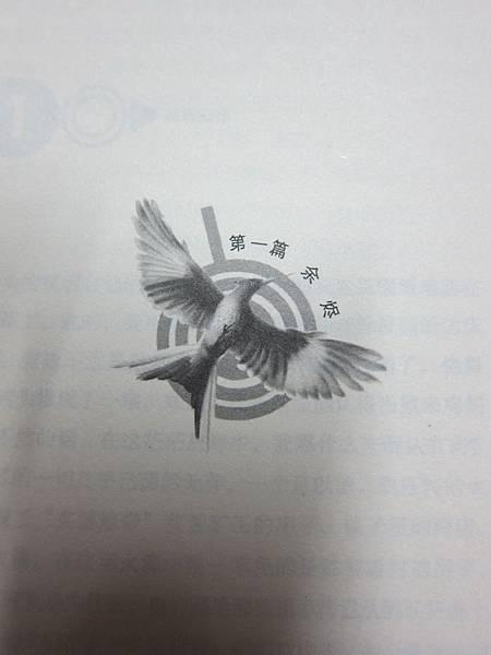 IMG_7777.JPG