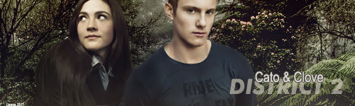 Cato-and-Clove-the-hunger-games-22016223-500-150.jpg