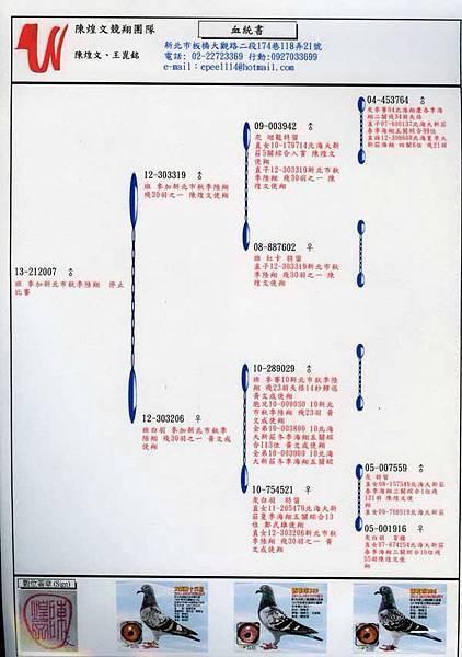 13-212007血統書