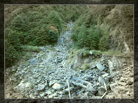 山西地震03.jpg
