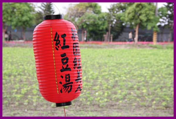 100220 屏東熱帶農業博覽會166.jpg