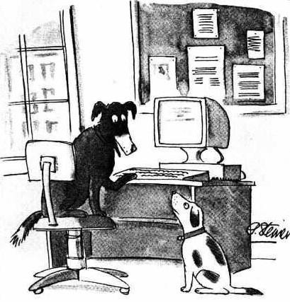 在網路上,沒人知道你是條狗