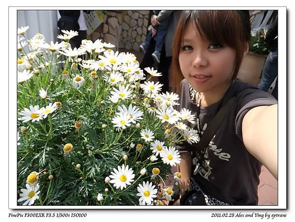 nEO_IMG_DSCF6651.jpg