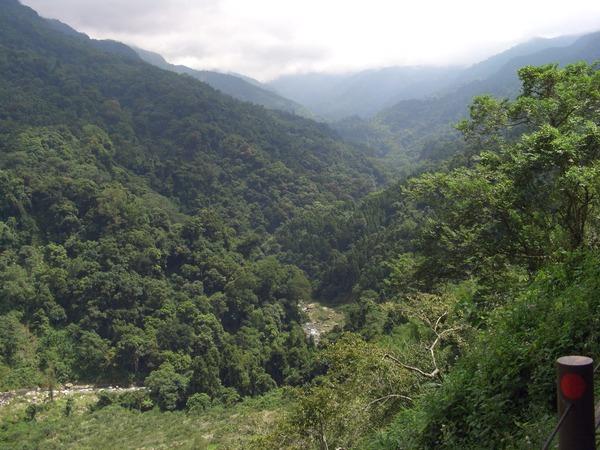 司馬限林道沿途山景
