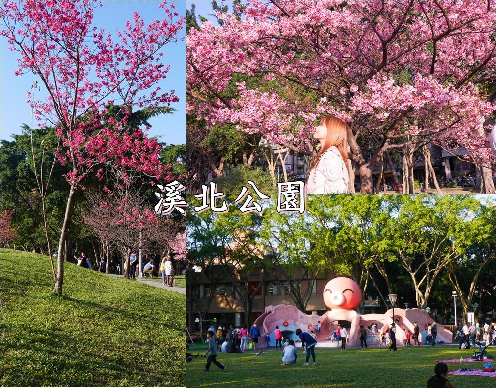 溪北公園 (2).jpg