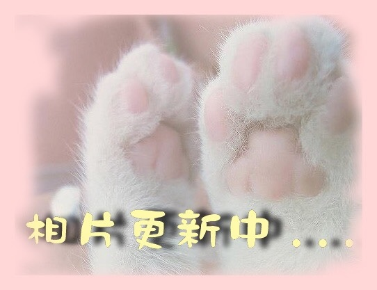 S__42229762.jpg