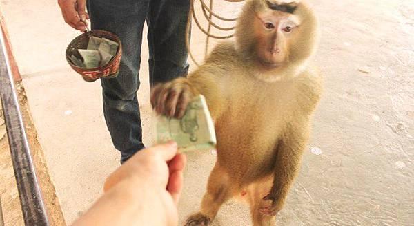 泰國旅遊給小費有學問紙鈔是尊重.jpg