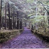 長野輕井澤