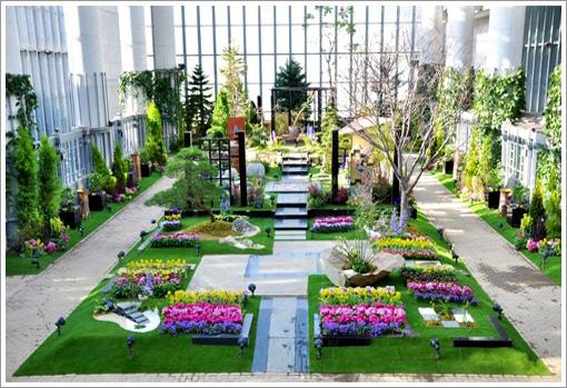 奇跡之星植物館-1