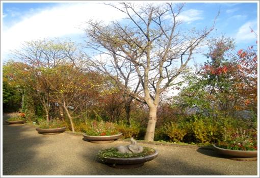 Promenade Garden-4