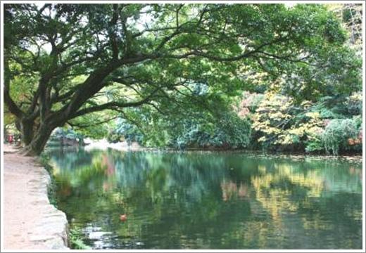 第11景-西湖