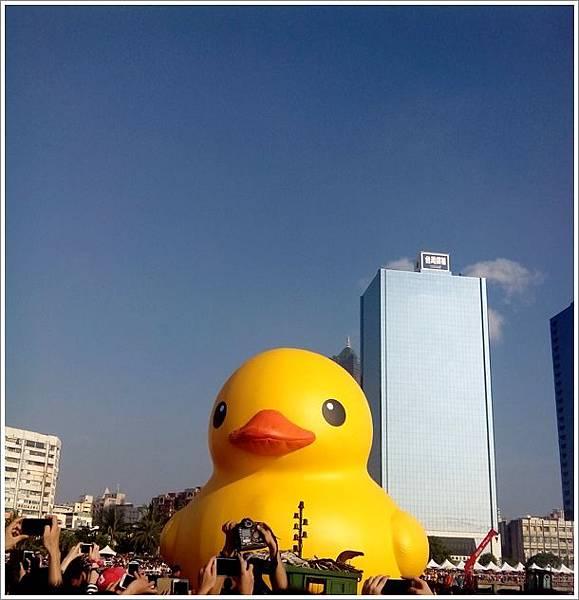 光榮碼頭黃色小鴨-7.jpg