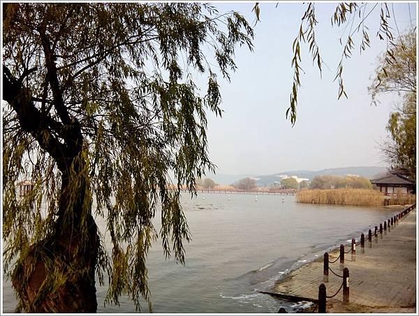 太湖畔.jpg