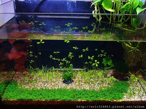 水下 - 002