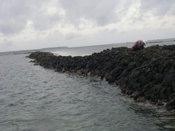 澎湖鳥嶼的第一天-下午行程-踏浪與浮潛19