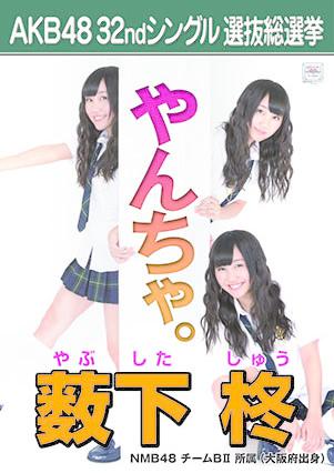 B15_yabushita_shu