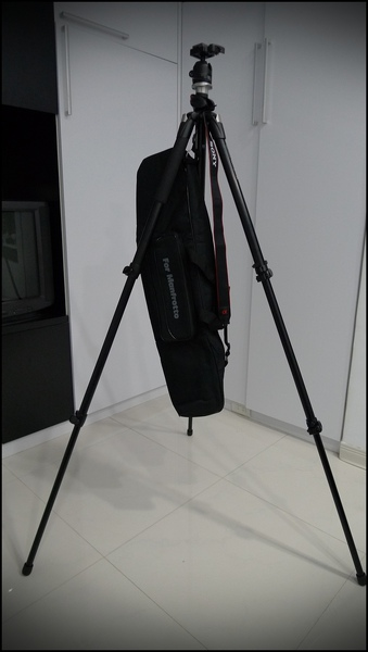 P1090555.JPG