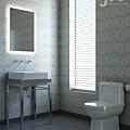 模擬 Vray 廁所作品1.jpg