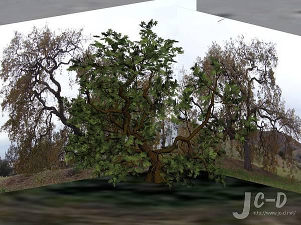 擬真樹製作1.jpg