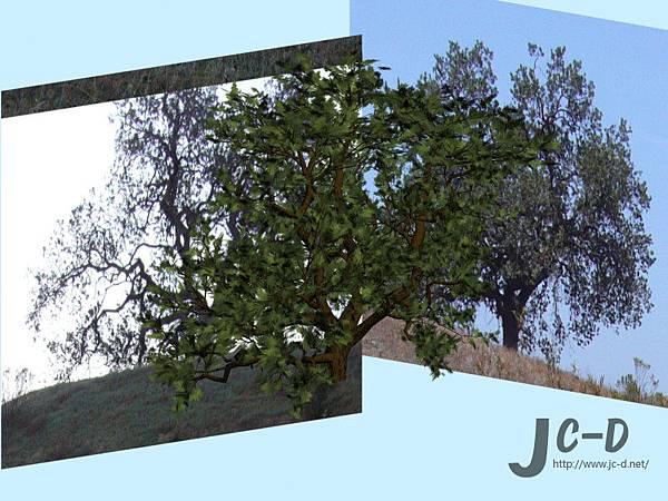 擬真樹製作2.jpg