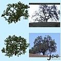 擬真樹製作3.jpg