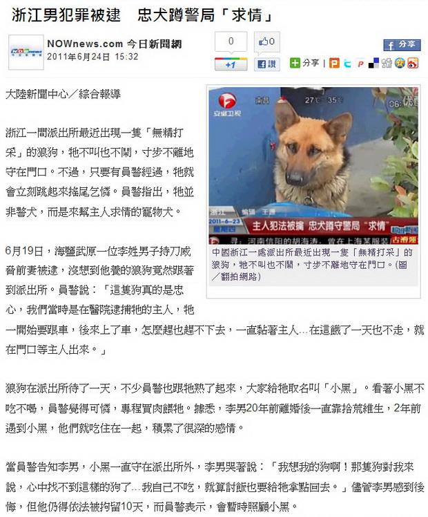 浙江男犯罪被逮 忠犬蹲警局「求情」 -2011.06.24.jpg