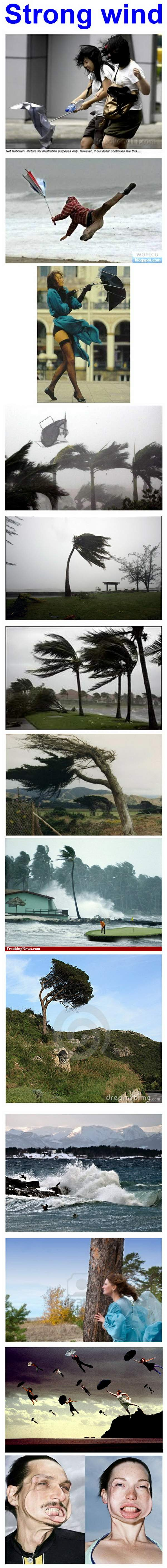 strong wind-00