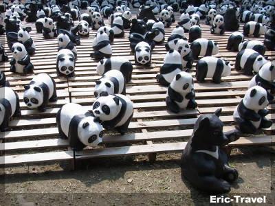 屏東-1600貓熊世界之旅-屏東運動公園1
