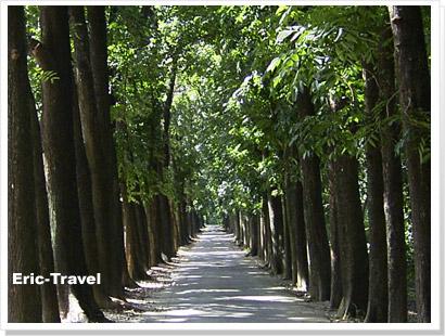 2-六-新威森林公園1.jpg