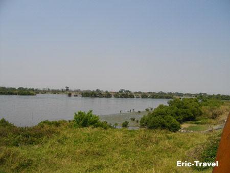2011-安平-湖濱水鳥公園1.jpg